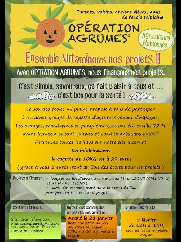 agrumes flyer